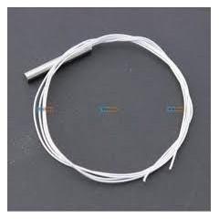 Sensor Temperatura Wzp Rtd Pt100 Pt-100 Arduino 4x30mm Cable 50cm Itytarg