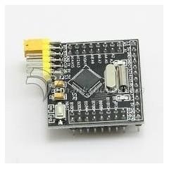 Mini Stm32f103c8t6 Placa De Desarrollo Arm Cortex Itytarg